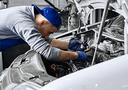Какой двигатель поставить в Ford Transit?